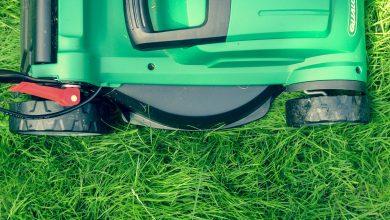 Photo of Cele mai bune maşini de tuns iarba electrica 2021